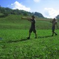 image 2006-07-08_09-12-09-jpg
