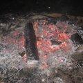 image 2010-07-23_22-42-47-jpg