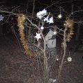 image 2006-12-22_22-04-27-jpg