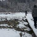 image 2013-02-11_14-32-28-jpg