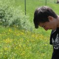 image 2015-05-16_14-26-28-jpg