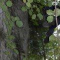 image 2008-09-20_16-29-10-jpg