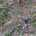 image 2009-10-31_15-56-09-jpg