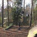 image 2012-11-03_14-36-03-jpg